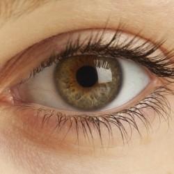 natural_eye lashes